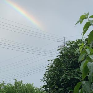 インドに届け。虹の架け橋