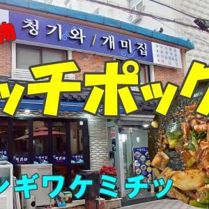 たこホルモン海老の唐辛子炒め煮・ナッチポックン(ナッコプセ)を堪能!「チョンギワケミチッ」・釜山。