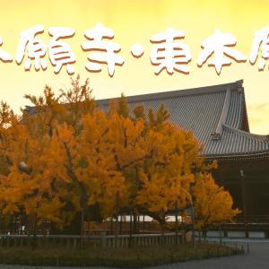 真宗大谷派本山・東本願寺と浄土真宗 本願寺派・西本願寺にいってみた。京都ひとり旅2020 #5