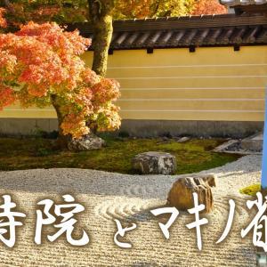 日本映画の父、マキノ省三像と、名庭園の等持院。京都ひとり旅#9。