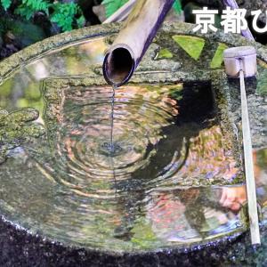 枯山水で有名な世界文化遺産、龍安寺。京都ひとり旅、10。