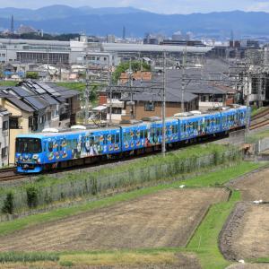 【きかんしゃトーマス号】 京阪電鉄交野線/河内森-私市 2020.05.24.