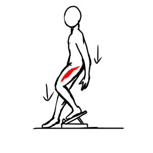 トレイルランニングで下山で起こる膝痛の謎に迫る