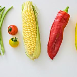 プランター菜園 7月に苗植えする野菜