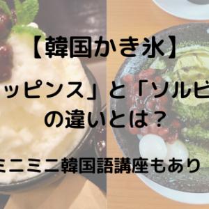 【韓国かき氷】「パッピンス」と「ソルビン」の違いとは?~ミニミニ韓国語講座もあり~