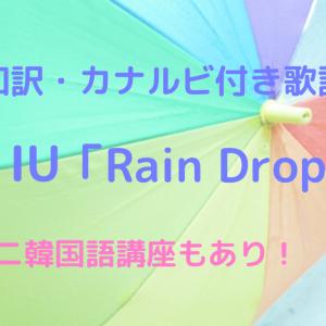 【和訳・カナルビ付き歌詞】IU(아이유) Rain Drop 【ミニミニ韓国語講座もあり!】