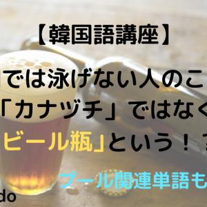 【韓国語講座】韓国では泳げない人のことを「カナヅチ」ではなく「ビール瓶」という!?