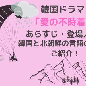 韓国ドラマ「愛の不時着」~あらすじ・登場人物・韓国と北朝鮮の言語の違いをご紹介!~