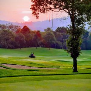 タイ政府がついに一部規制緩和を発表!飲食店やゴルフ場は営業再開へ。