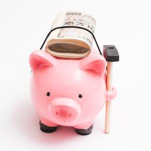 定額給付金申請書 本日到着。その使い道を決める!