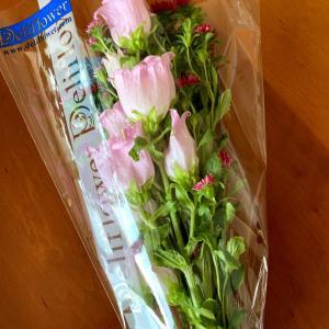 妊活中のモヤモヤは花が癒してくれます