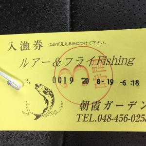 スプリットリング直結で釣果はどうなった? 朝霞ガーデンで試してきました。管釣り育成ゲーム 実釣編。