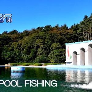 プールフィッシングのススメ!!初心者からベテランアングラーまで、オススメの管理釣り場。2020年度 関東プールフィッシング まとめ。