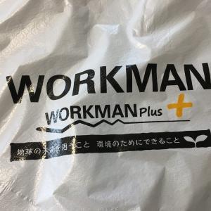 ワークマン 杢ストレッチレインジャケット。薄手のアウターで1日中快適フィッシング。