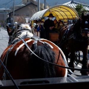 10.由布院と辻馬車の旅