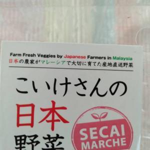 マレーシア*クアラルンプールで買える*こいけさんの日本野菜*
