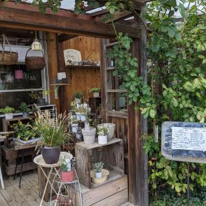 鶴瀬でカフェめぐり