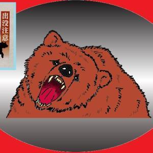 熊に注意!