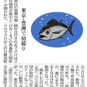 マグロ 2084万円なり!