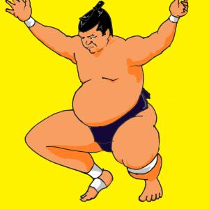 大相撲5月場所が終わって