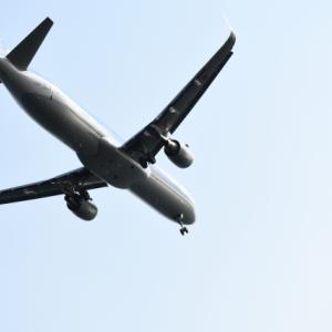 【コラム】JAL破産でマイルが無駄に、ってありえる?