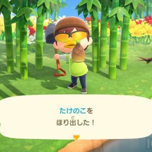 タケノコの集め方!あつまれどうぶつの森