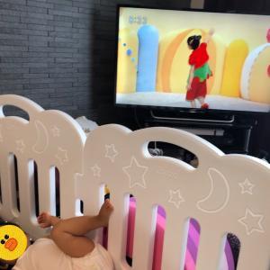 赤ちゃんとテレビ 1歳前半