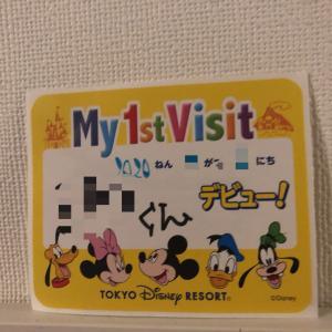 1歳児と東京ディズニーランドへ行ってきた!