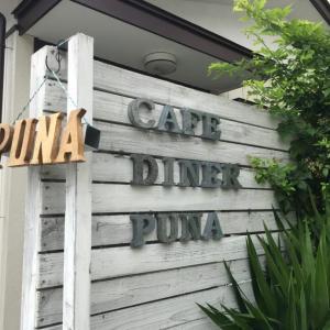 プナ(puna) 川口のハワイアンカフェでタンドリーチキンを堪能!大自然ハワイの息吹を感じたよ。