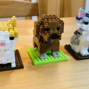 【ダイソー】おうち遊び!プチブロック作ってみました《nano blockについても》