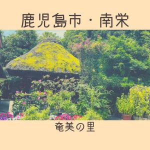 【奄美の里】鹿児島市内で奄美旅行気分♪