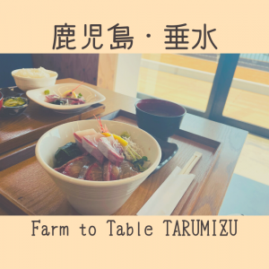 【鹿児島・垂水】海鮮丼が美味しすぎた【たるたるぱあく】