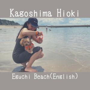 【Kagoshima Hioki】Eguchi beach【dog friendly beach】