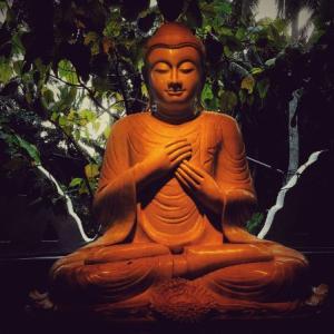 【夕方以降】東京の座禅会【23区】初心者向けの指導ありをまとめる