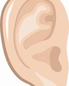 「低音障害型感音難聴(その2)」