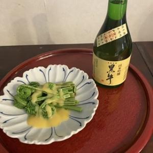 和歌山のお酒とこごみ