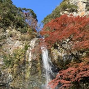 箕面の滝&カフェ