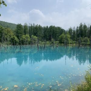 青い池〜白ひげの滝〜吹上露天の湯〜十勝岳温泉