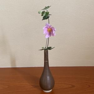 長月の茶花