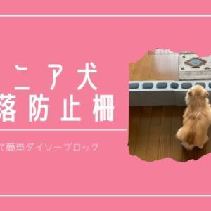 【安くて簡単】老犬チワワのための玄関転落防止柵
