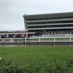 【北海道旅行記】 北海道大学に行って、はじめて競馬を生で見た話