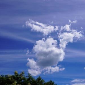 今日の雲は USSエンタープライズ