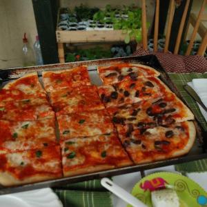 wwoof italia & stone oven & Focaccia の話