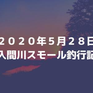 2020年5月28日入間川スモール釣行記