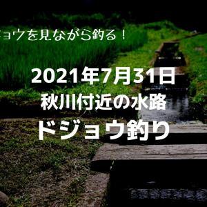 2021年7月31日秋川付近の水路でドジョウ釣り