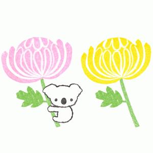菊の花イラスト