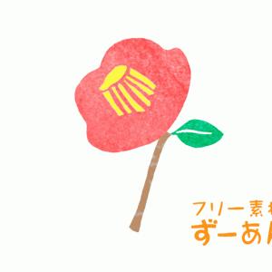 椿(ツバキ)イラスト