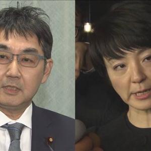 検察の包囲網迫る 河井議員夫妻 自民党離党についてみんなの声