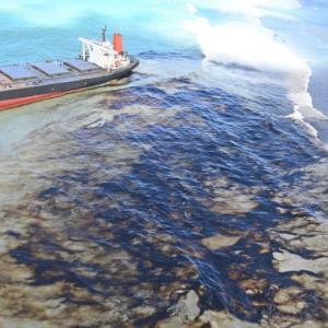 商船三井の大型貨物船が座礁、大量の燃料が流出しサンゴ危機…モーリシャス政府が緊急事態宣言