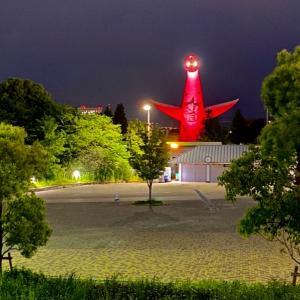 コロナ緊急事態【大阪モデル】しないはずの赤信号が点灯  吉村知事  府民に外出自粛要請
